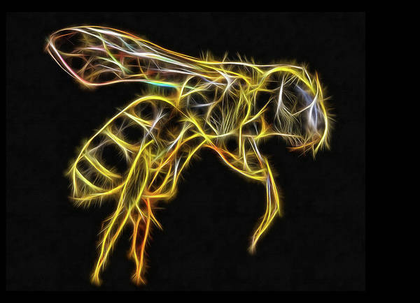 Digital Art - Golden Honey Bee Fractalized by Matthias Hauser