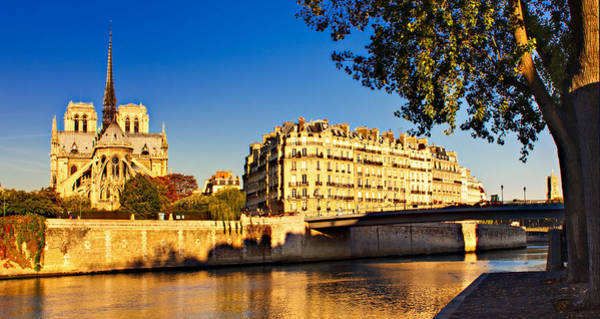 Photograph - Golden Hour In Paris by Barry O Carroll