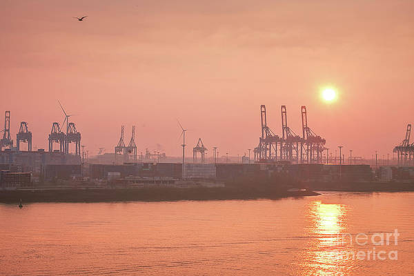 Photograph - Golden Hour On The Elbe by Marina Usmanskaya