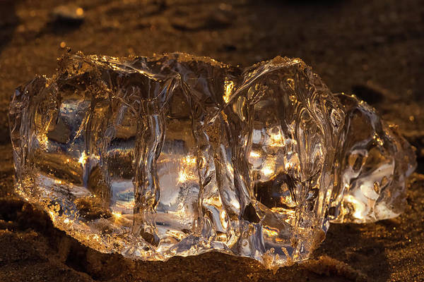 Wall Art - Photograph - Golden Ice by Heather Kenward