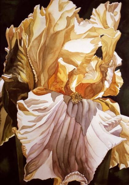 Painting - Golden Iris by Alfred Ng