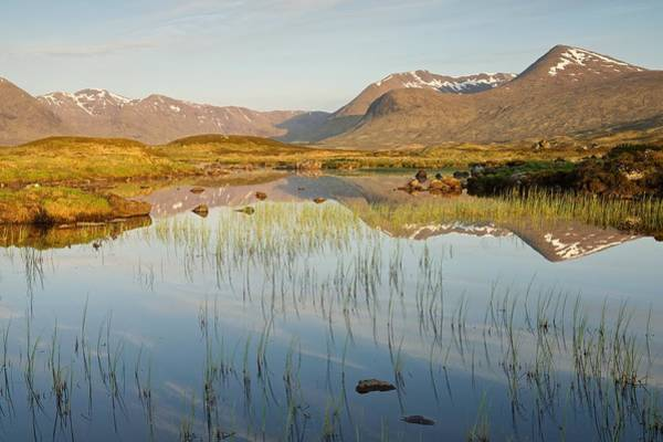 Photograph - Golden Light And Reflections At Lochan Na Stainge by Stephen Taylor