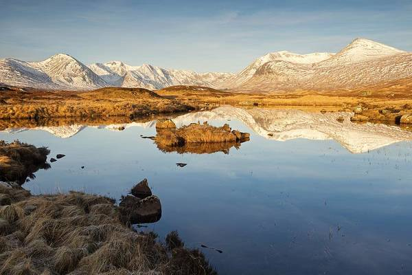 Photograph - Golden Light Hits The Black Mount by Stephen Taylor