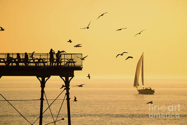 Photograph - Golden Light In Aberystwyth by Keith Morris