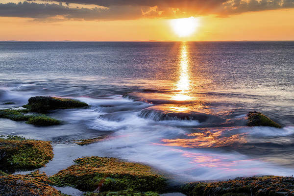 Photograph -  Golden Light Sunset, Rockport  Ma. by Michael Hubley