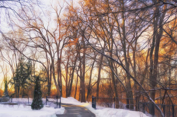 Painting - Golden Light Through The Trees by Garvin Hunter