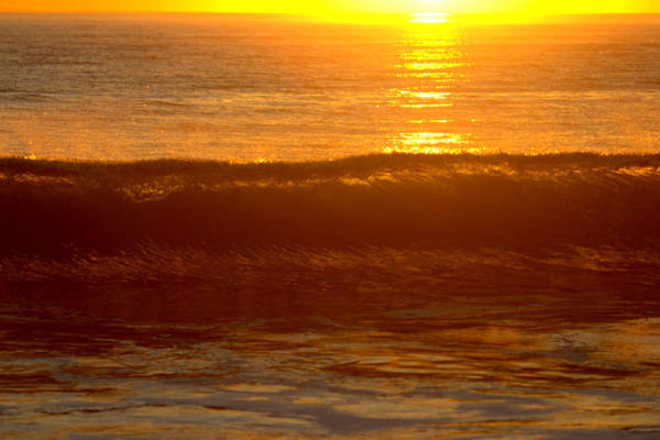 Photograph - Golden Lip At San Onofre by Brad Scott