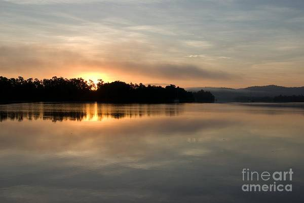 Far North Queensland Wall Art - Photograph - Golden Liquid Dawn by Kerryn Madsen-Pietsch