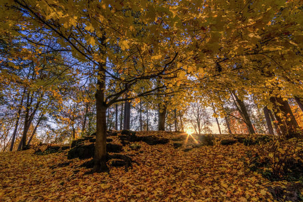 Photograph - Golden Manito by Mark Kiver