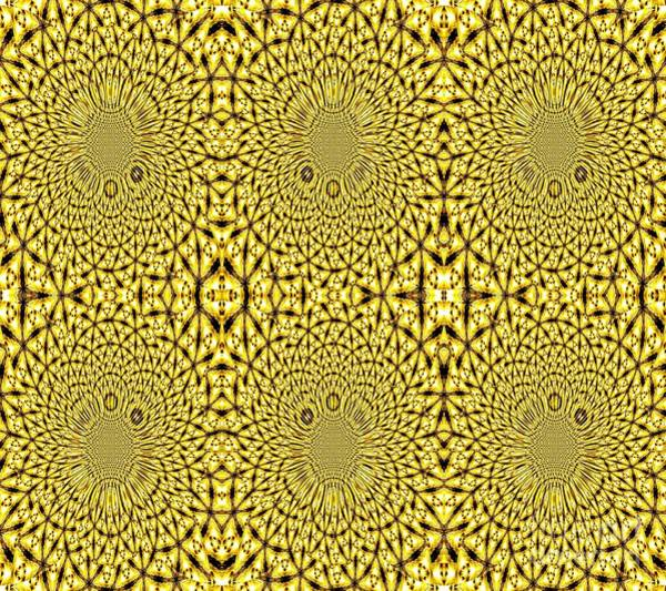 Photograph - Golden Metallic Lights Kaleidoscope Mandala Abstract 3 by Rose Santuci-Sofranko