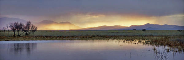Photograph - Golden Mist by Leda Robertson