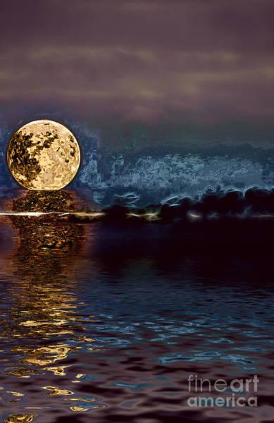 Wall Art - Photograph - Golden Moon by Elaine Hunter