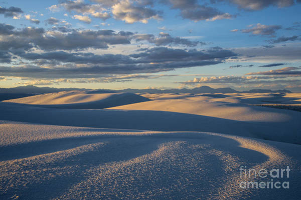 Wall Art - Photograph - Golden Morning - White Sands National Monument  by Sandra Bronstein