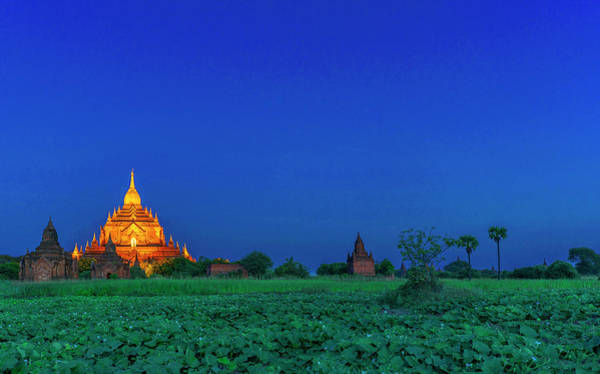 Photograph - Golden Pagoda View After Sunset by Pradeep Raja PRINTS