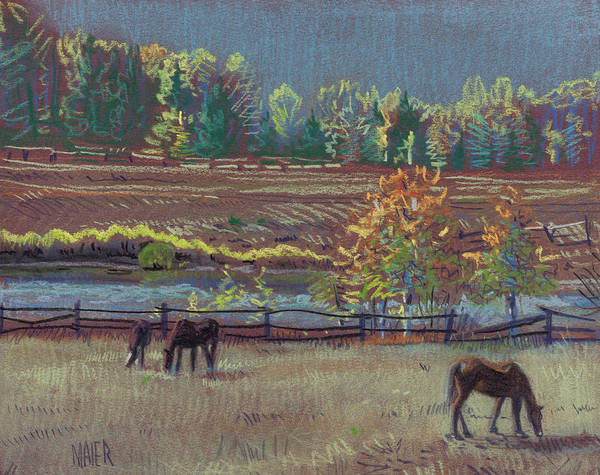 Horse Drawing - Golden Pastures by Donald Maier
