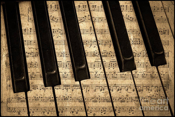 Grand Piano Photograph - Golden Pianoforte Classic by John Stephens