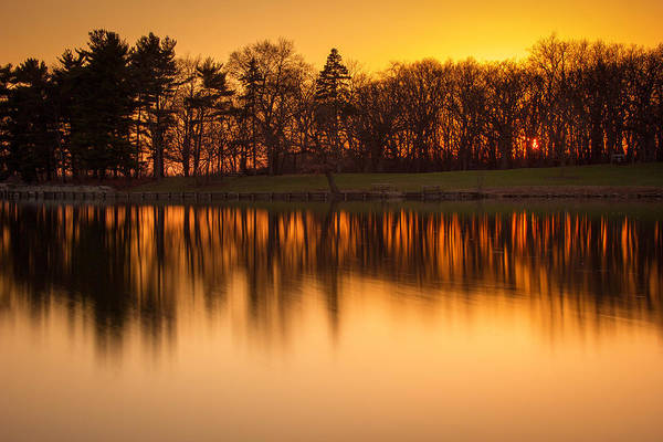 Wall Art - Photograph - Golden Pond by Jackie Novak