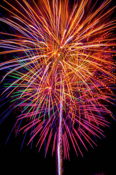 Dazzle Wall Art - Photograph - Golden Purple Fireworks by Garry Gay