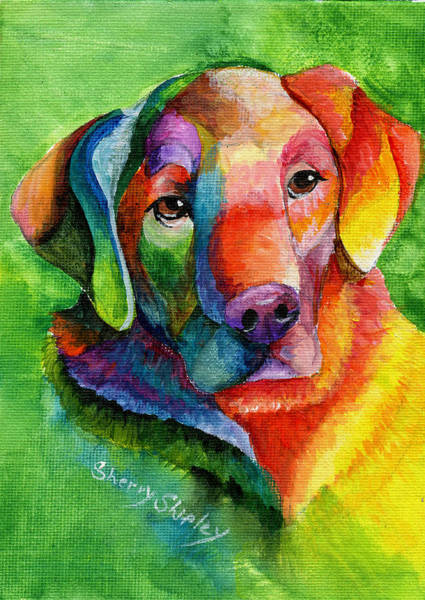 Painting - Golden Rainbow by Sherry Shipley