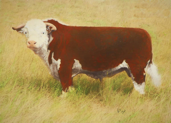 Hereford Bull Painting - Golden Real 72 by William Mace