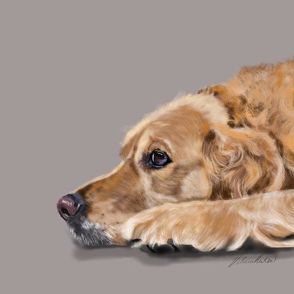 Golden Retriever Digital Art - Golden Retriever At Rest by Victoria Newton