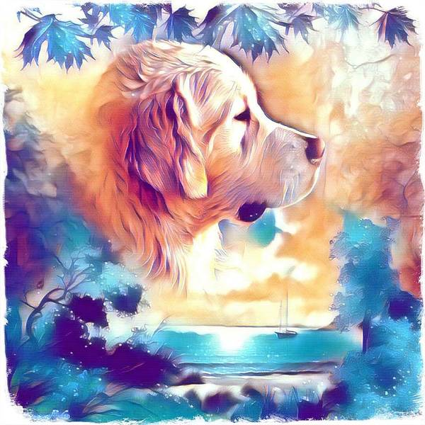Golden Retriever Digital Art - Golden Retriever At Sunset by Kathy Kelly