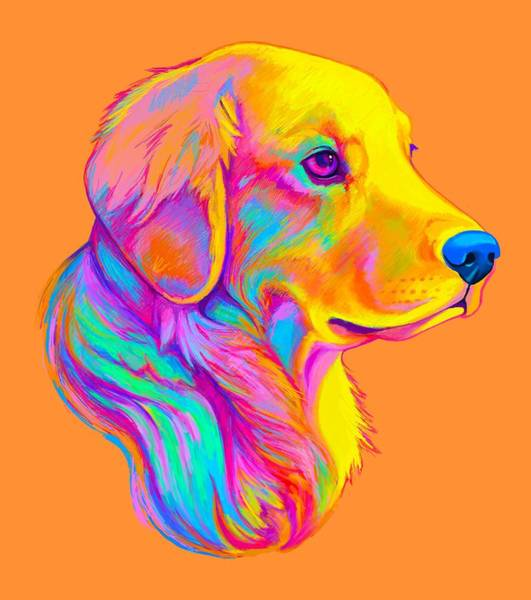 Golden Retriever Digital Art - Golden Retriever In Colors by A
