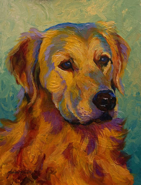 Golden Gate Bridge Painting - Golden Retriever by Marion Rose