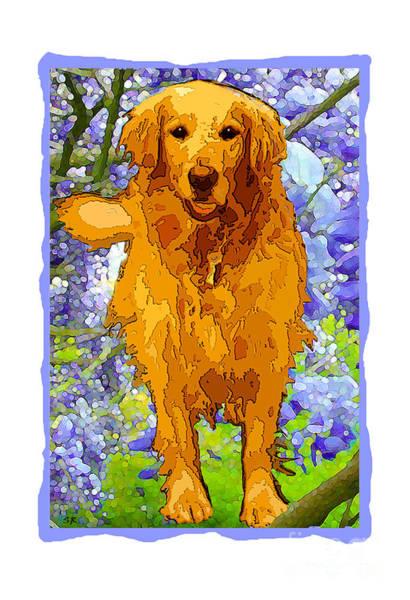 Golden Retriever Mixed Media - Golden Retriever Print by Susan Rothschild