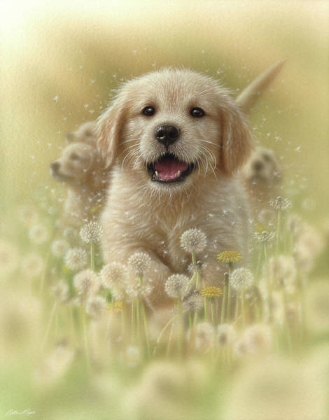 Golden Retriever Mixed Media - Golden Retriever Puppy - Dandelions by Collin Bogle