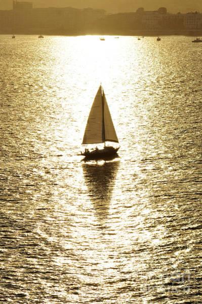 Photograph - Golden Sail by Robert WK Clark