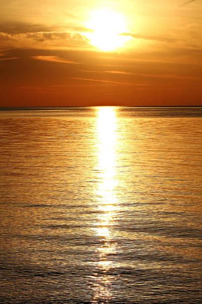 Wall Art - Photograph - Golden Sun by Celestial  Blue