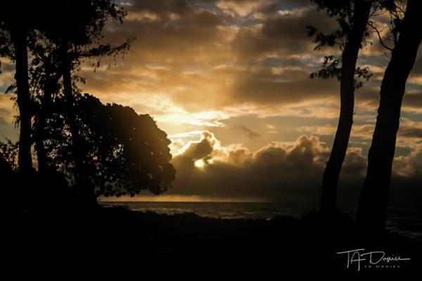 Photograph - Golden Sun by T A Davies
