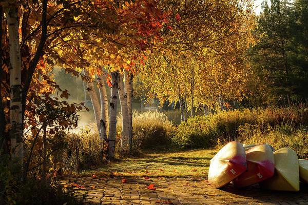 Photograph - Golden Sunlight Rangeley Maine by Jeff Folger