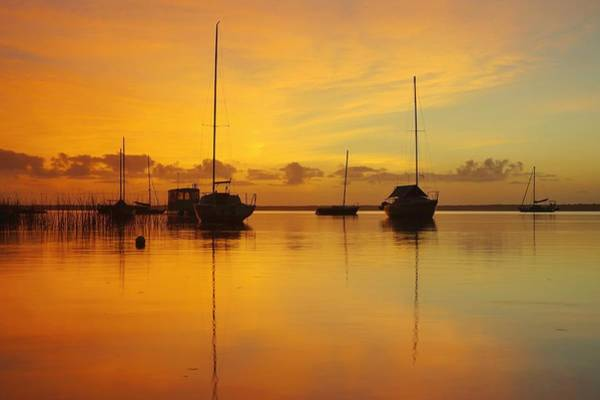 Photograph - Golden Sunrise At Boreen Point by Keiran Lusk