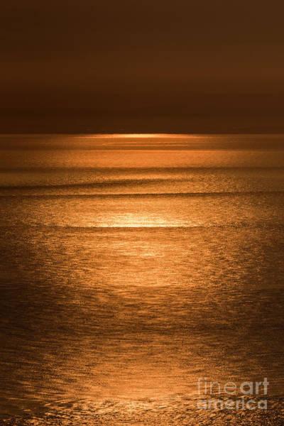 Photograph - Golden Sunrise by Clayton Bastiani