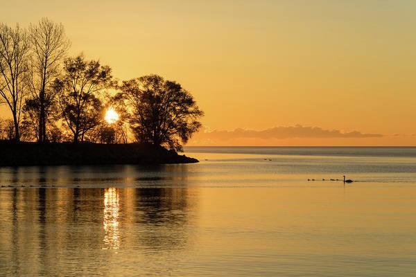 Photograph - Golden Sunrise Glide With A Bit Of Breeze by Georgia Mizuleva