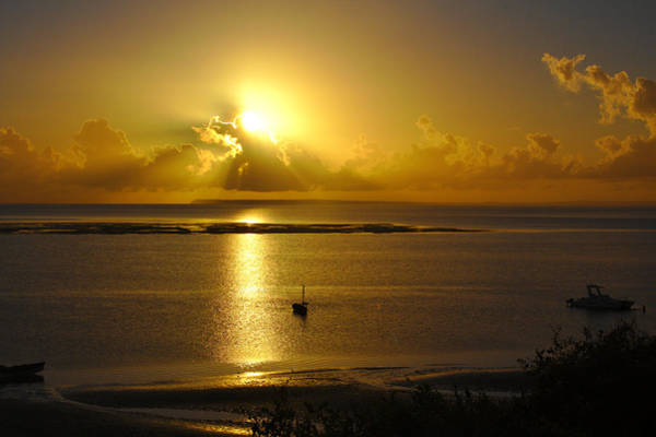 Photograph - Golden Sunrise by Jeremy Hayden