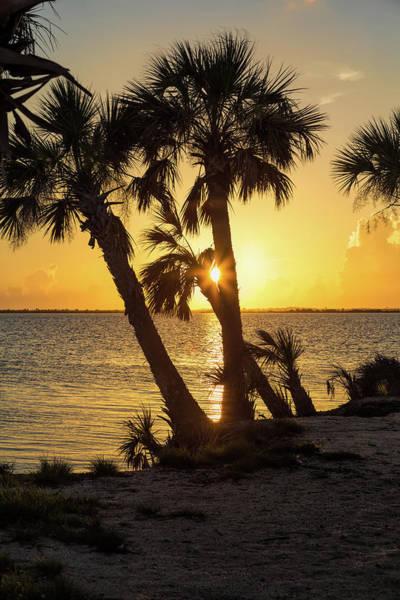 Photograph - Golden Sunrise by John M Bailey