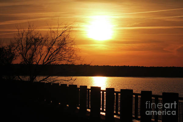 Photograph - Golden Sunset At Santee by Jennifer Robin