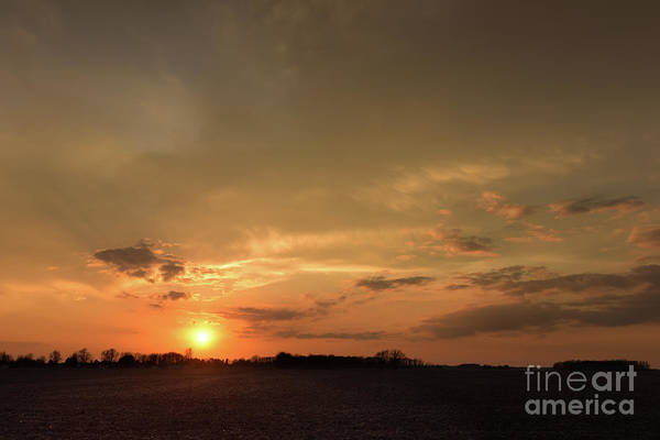 Photograph - Golden Sunset by Charles Owens