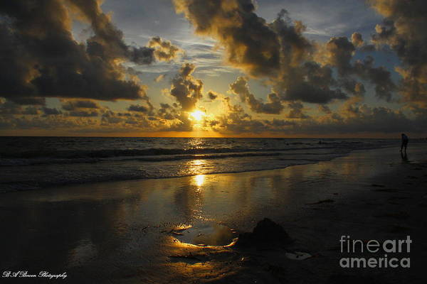 Photograph - Golden Sunset From Indian Shores by Barbara Bowen