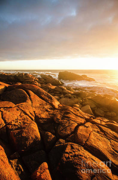 Golden Tasmania Coastline Art Print