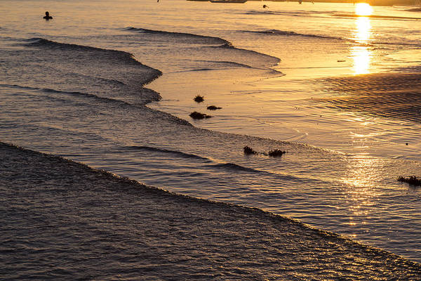 Photograph - Golden Tide by James BO Insogna
