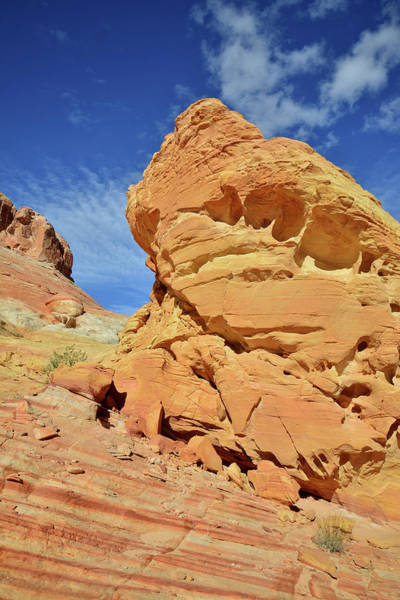 Photograph - Golden Tower In Valley Of Fire by Ray Mathis