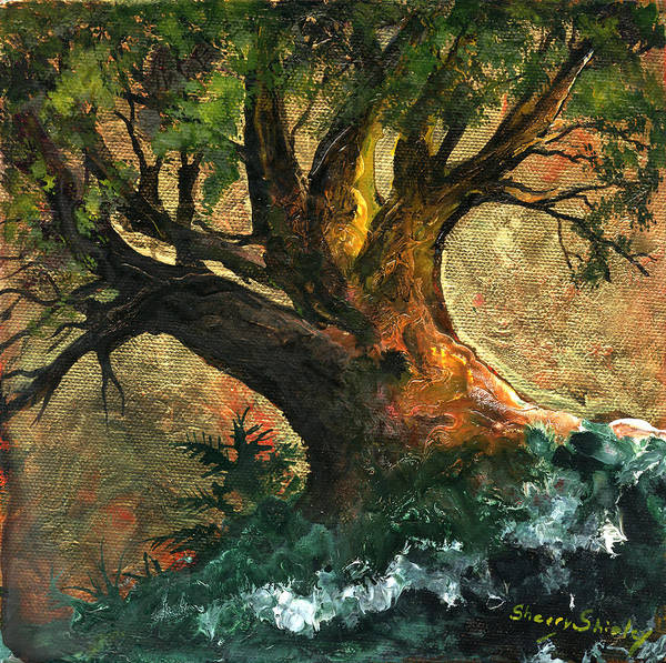 Painting - Golden Tree Of Life by Sherry Shipley