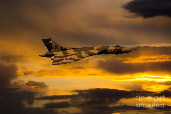 Falklands Digital Art - Golden Wings by J Biggadike