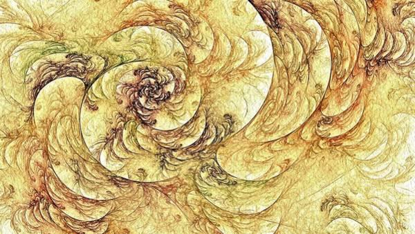 Digital Art - Goldenrod Floral Spiral by Doug Morgan