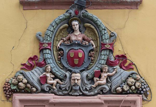 Wall Art - Photograph - Golderner Hecht Coat Of Arms by Teresa Mucha