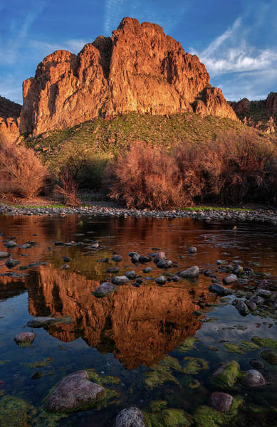 Photograph - Goldfield Mountain Reflections Vertical by Dave Dilli